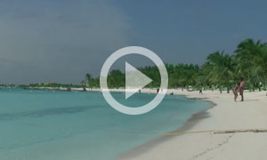 Akumal Beach - Where Ecology and Tourism Go Hand in Hand