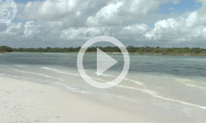 Boca Paila Beach, Tulum - Nature, Relaxation and Beauty (B)