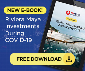 Free Ebook - Investments During Covid-19