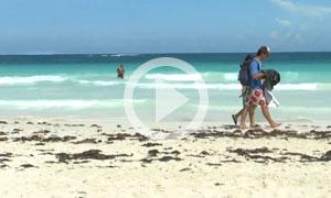 Tulum Beach - Mezzanine Beach - Tulum's Hidden Paradise