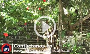 Vivir en Playa del Carmen - Ted Rhodes [ES] - TOPMexicoRealEstate.com