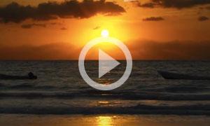Tulum Neighborhoods - Life on the Most Beautiful Beaches of the Rivier